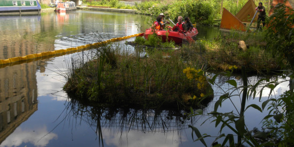 Creating beautiful and resilient habitats in urban environments