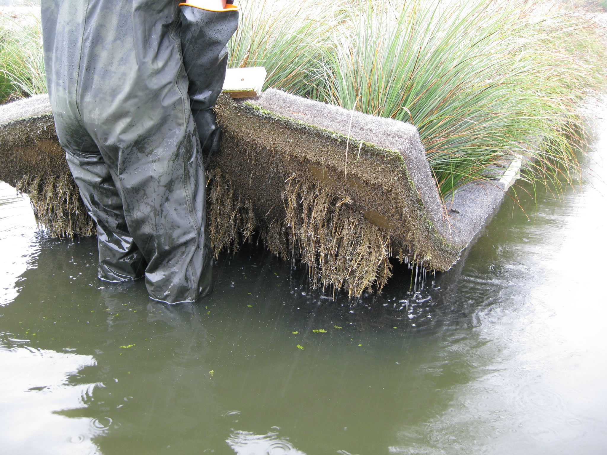 Research paper on industrial wastewater treatment
