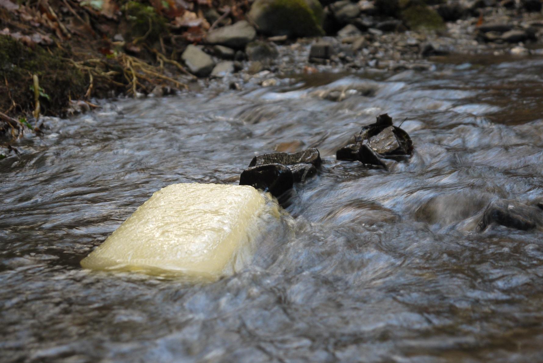 Water Lynx block in stream