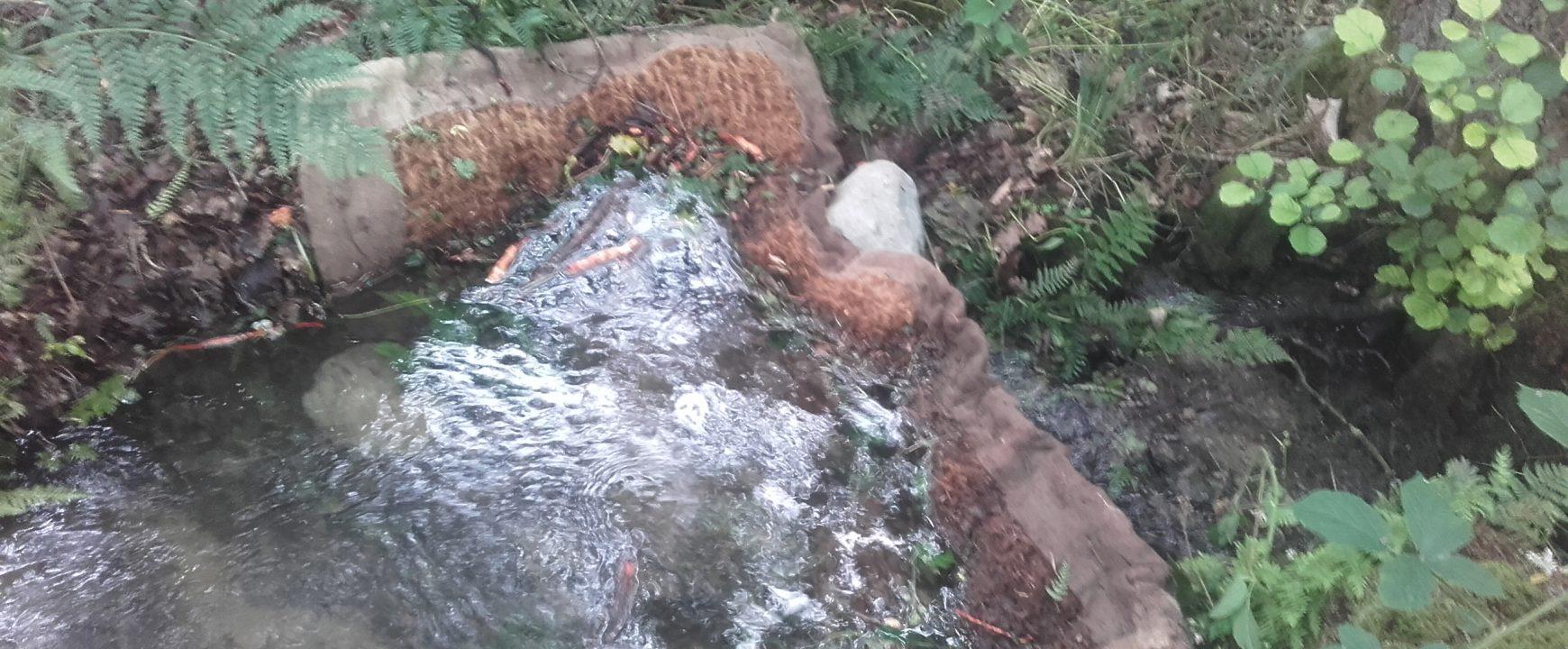 Silt mats preventing sediment from flushing downstream